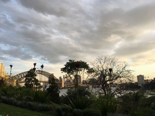 Sydney Harbour bridge just before sunset taken from Wendy's Secret Garden Sydney