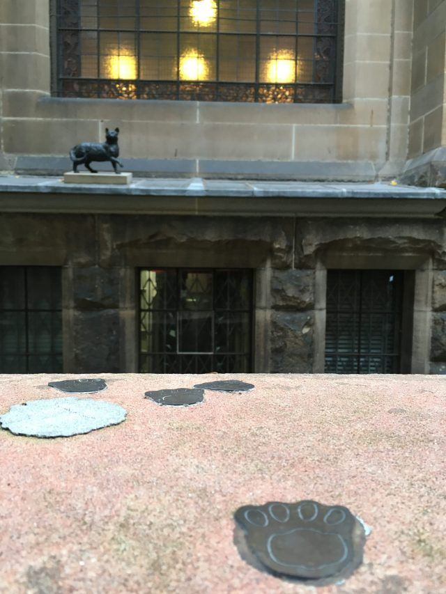 Trim was the cat of famous Australian explorer Matthew Flinders. There's a statue of him outside the Mitchell Library. Add paying him a visit to your list of fun things to do near Circular Quay.