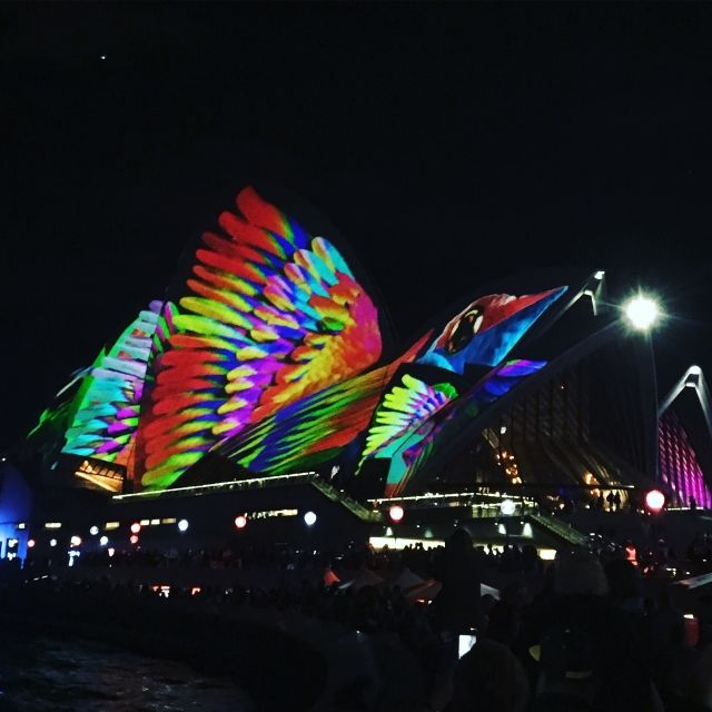 Sydney Opera House sails covered in the projection of a butterly for Vivid Sydney, one of the top things to do in circular Quay