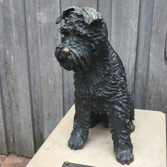 There's an amazing story behind the statue of Biggles in Sydney's The Rocks - he used to ride on the back of a motorbike and jump off balconies to chase cats!