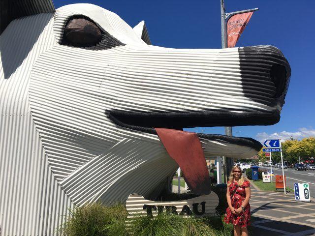Tirau New Zealand is famous for it's corrugated iron signs - including this giant dog.