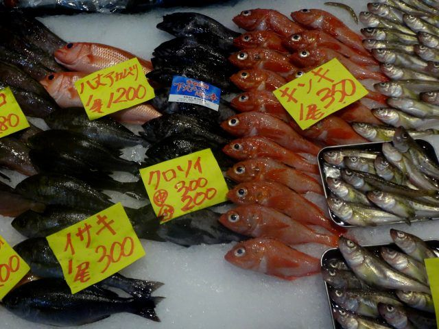 Fish on display at the new buildings at Tsukiji Outer Market