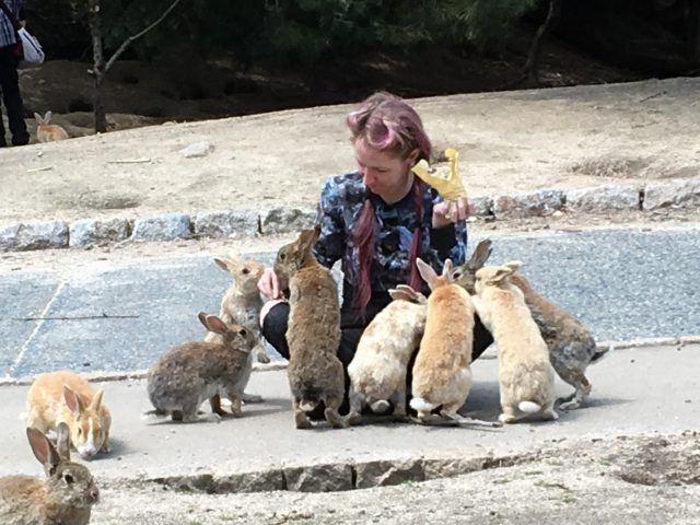 Okunoshima, aka Rabbit Island is an island just off the coast of Japan that's inhabited solely by bunnies - and they love to meet people