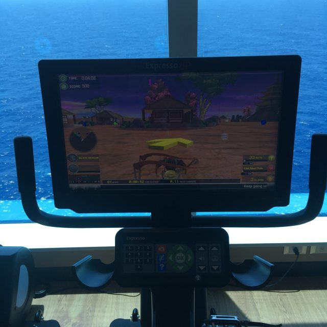 the Virtual Reality bikes in the Majestic Princess Gym make wearing off all the on board food fun.