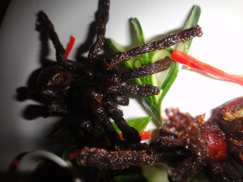 Close up of Deep Fried Spiders on a white plate