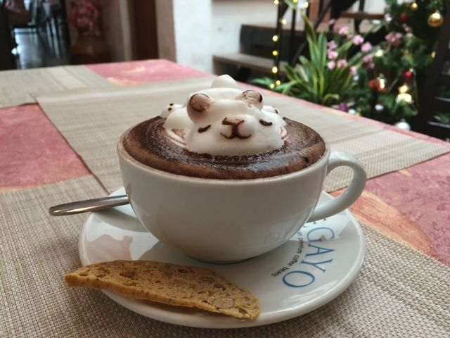 Hot Chocolate with a bear made from the foam in Penang