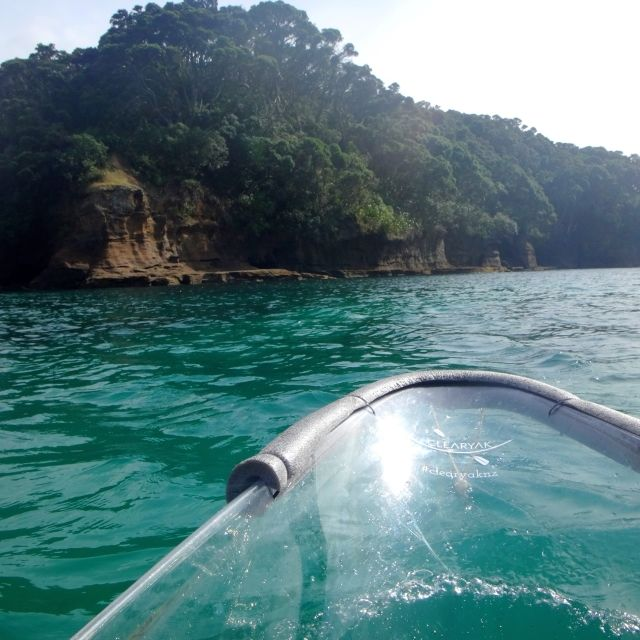 View from the front of a clear kayak in Goat Island, New Zealand