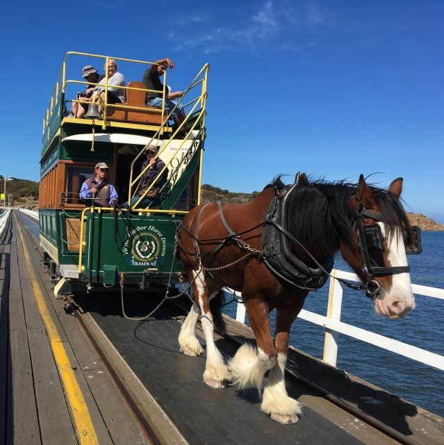 Horse tram in Victor Harbor, an easy day trip from Adelaide