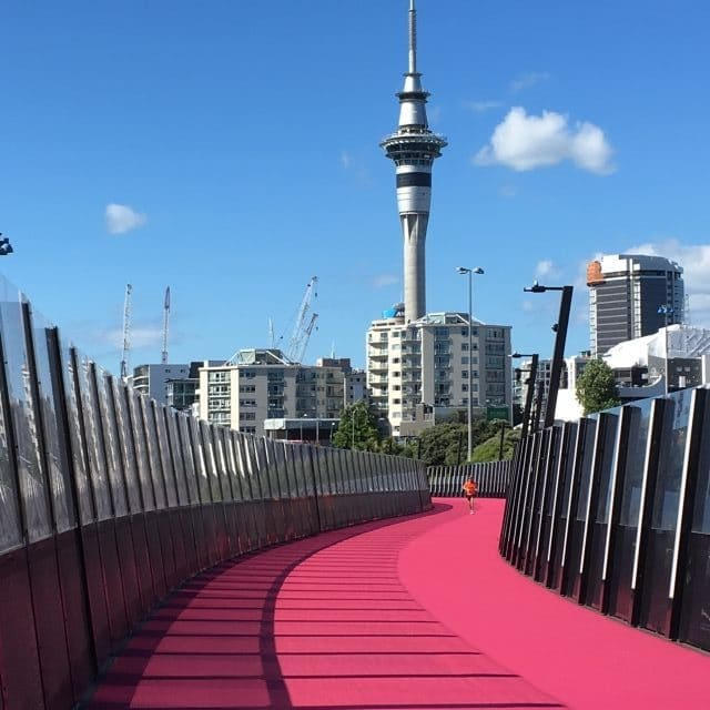 Pink path with the Sky Tower n the distance in Auckland, New Zealand