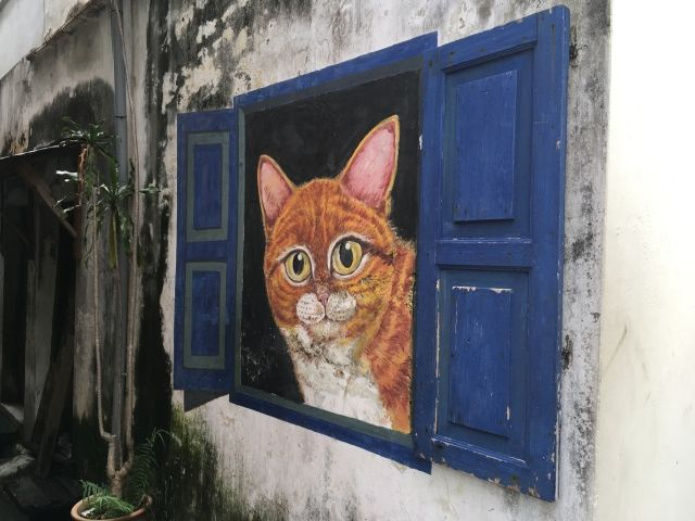 Mural of a ginger cat peering out of a blue shutter in Penang