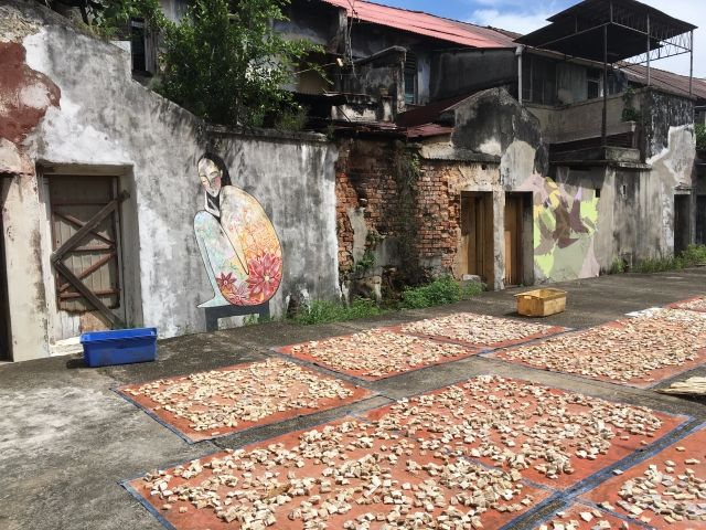 Fish drying on the pavement with a street art mural behind