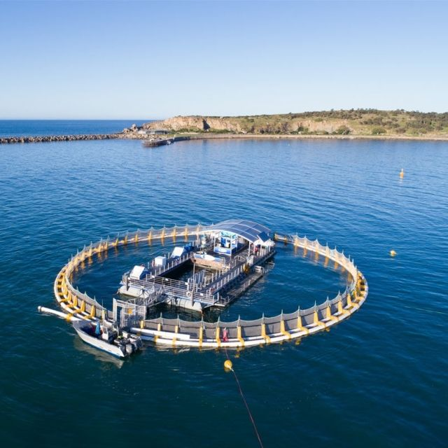 The Oceanic Victor circular floating aquarium in the middle of the sea