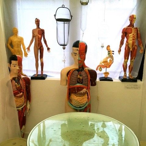 Anatomical dummies decorate Sanatorium Cafe, Fukuoka