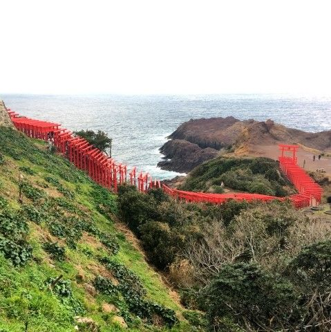 Shrine made of hundred red tori gates on a cliff
