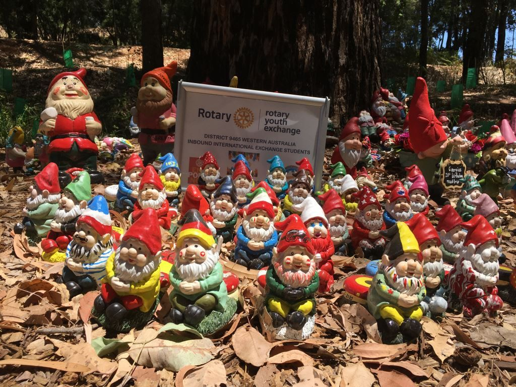 Some of the gnomes that make Gnomesville in Perth their home.