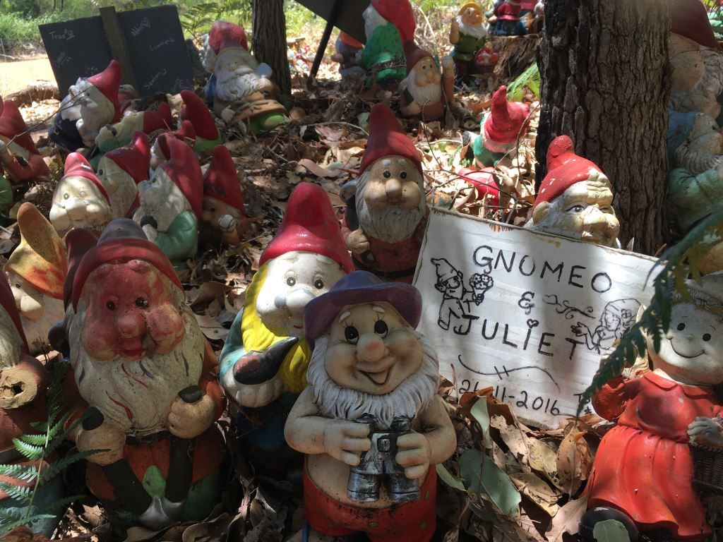 Gnomes at Gnomesville