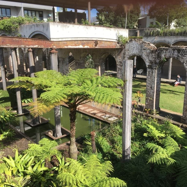 Palm trees and ruins at Paddington Reservoir sydney