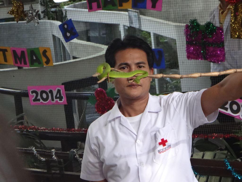 Man holding small green snake in Bangkok